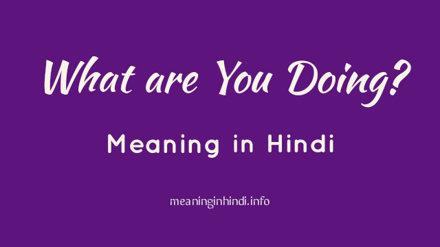 What are You Doing Meaning in Hindi