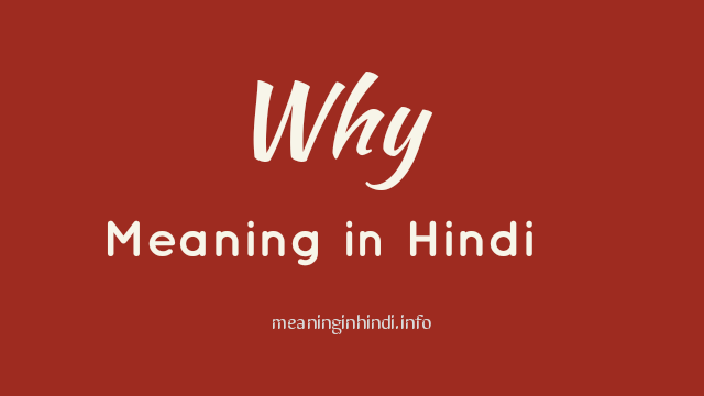 Why Meaning in Hindi